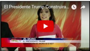Trump construyendo el muro